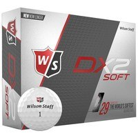 Wilson DX2 Golf Balls White